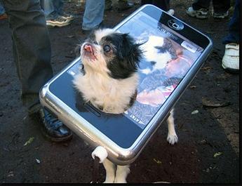 iphonedogcostume