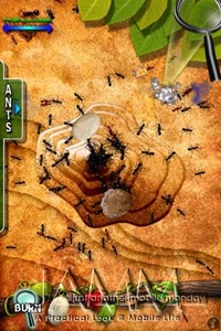 Ant Hill for iPhone