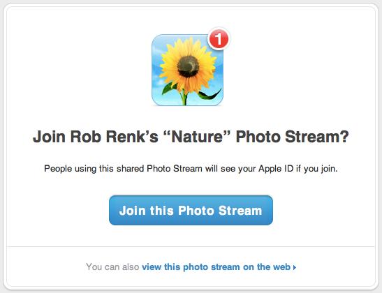Photostream-Nature-Photostream