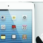 iPad-mini-switch