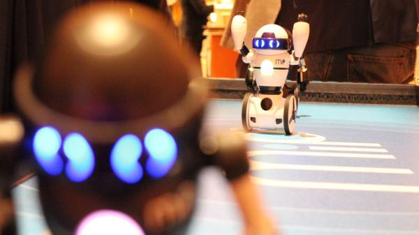 MIP-robots6