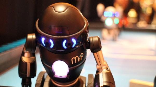 MIP-robots7