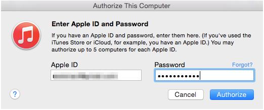 authorize_computer